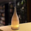 Ceramic aroma diffuser GH2166B